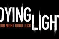 dying light banner