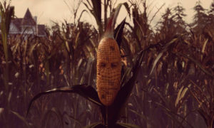 Maize-Screenshot-4